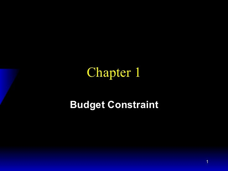 Chapter 1 Budget Constraint