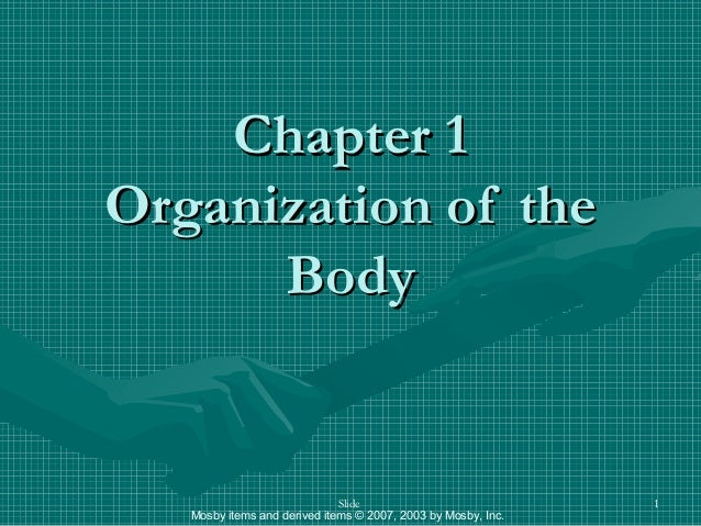 Mosby items and derived items © 2007, 2003 by Mosby, Inc. Slide 1 Chapter 1Chapter 1 Organization of theOrganization of th...