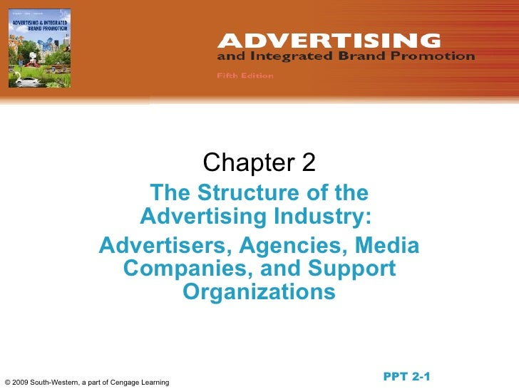 Chapter 2                                The Structure of the                               Advertising Industry:         ...