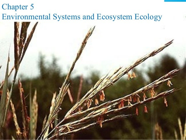 Chapter 5 Environmental Systems and Ecosystem Ecology  © 2011 Pearson Education, Inc.