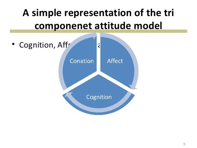 How does cognition affects consumer behavior