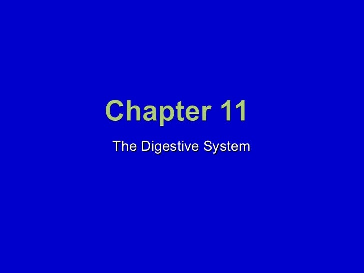 11. The Digestive System