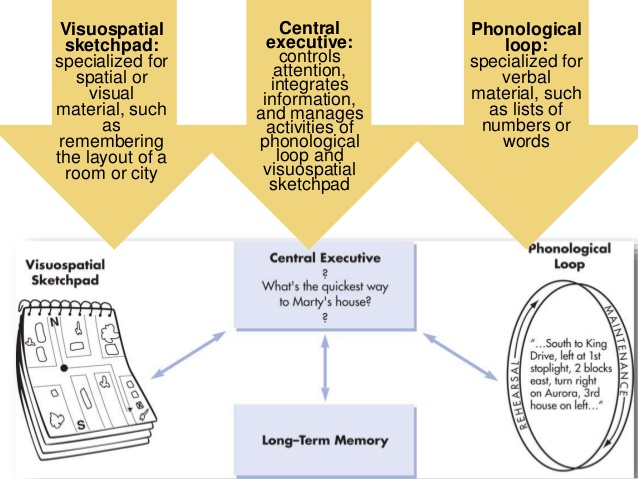 bulletin of psychological type