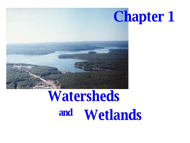 Watersheds   and Wetlands   Chapter 1