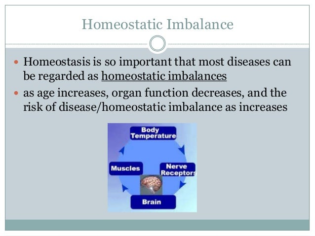 homeostatic imbalances essay Kelsey flaherty dr hardin homeostatic imbalances: hypertension september 26, 2014 as a medical assistant it is vital that we are able to communicate.