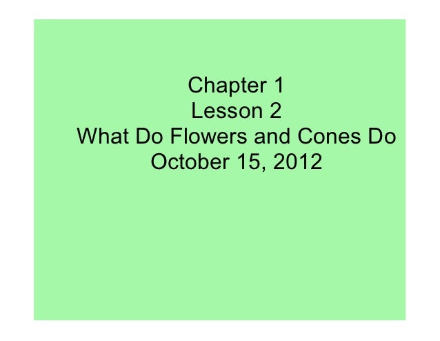 Chapter 1          Lesson 2What Do Flowers and Cones Do      October 15, 2012