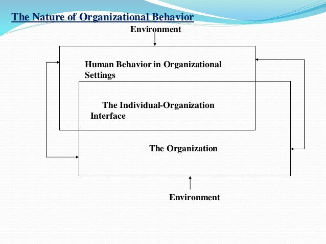organizational behaviour course essay Over the course of this semester, organizational behavior has highlighted numerous topics, which concentrated on the perception of individual's personality impacts on the day-to-day changes that occur in an organization.