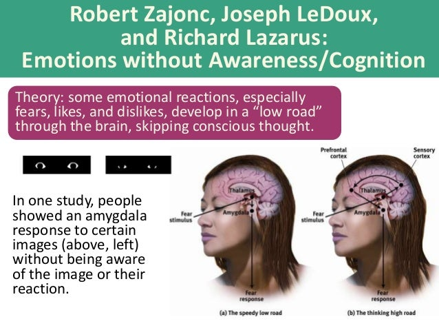 Road Cognition