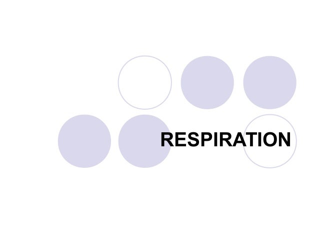 Chapter 10   respiration