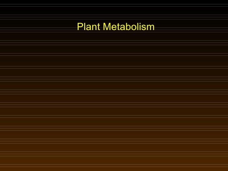 Plant Metabolism