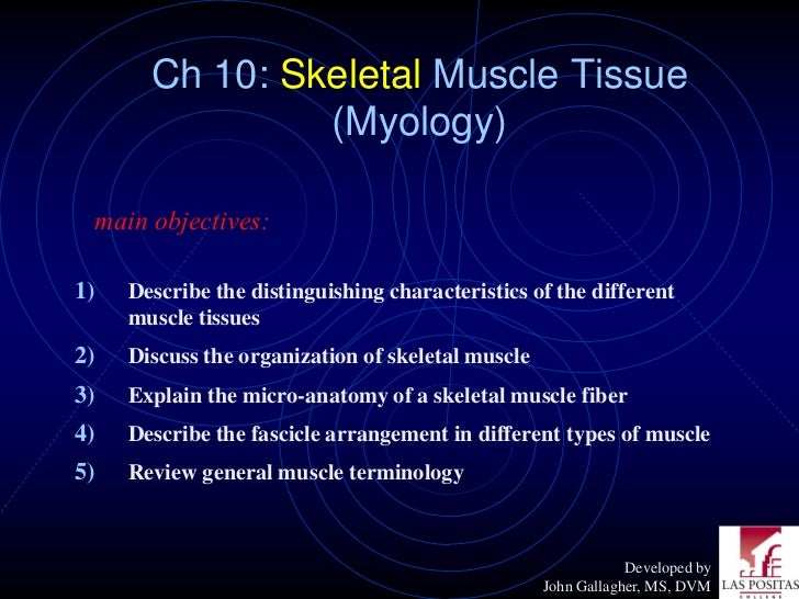 Ch 10: Skeletal Muscle Tissue                (Myology) main objectives:1)   Describe the distinguishing characteristics of...