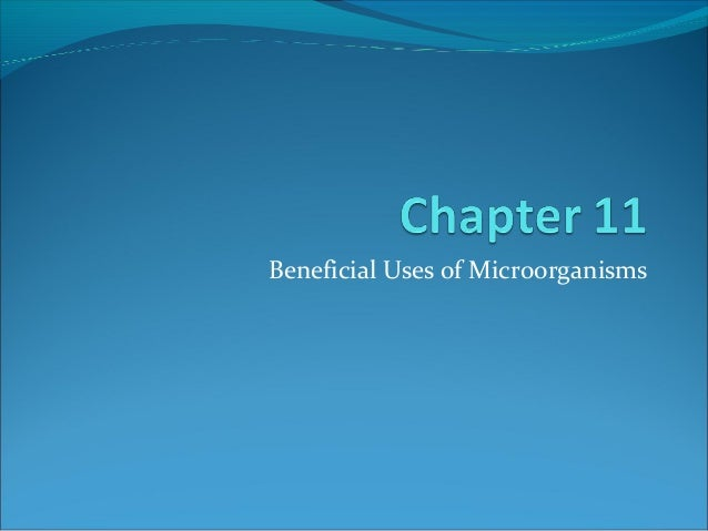 MIC204 (Food Microbiology) - Chapter 11 : Beneficial Uses of Microorganisms