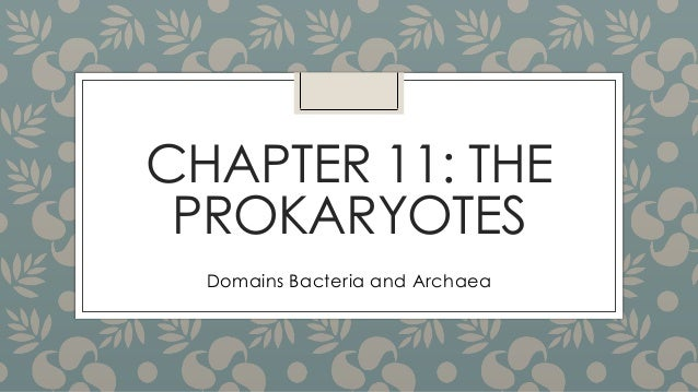 CHAPTER 11: THE PROKARYOTES Domains Bacteria and Archaea