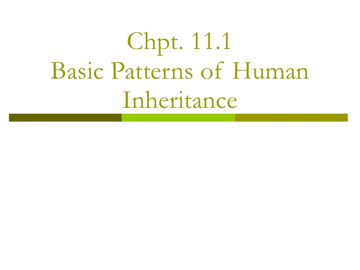 Chpt. 11.1 Basic Patterns of Human Inheritance