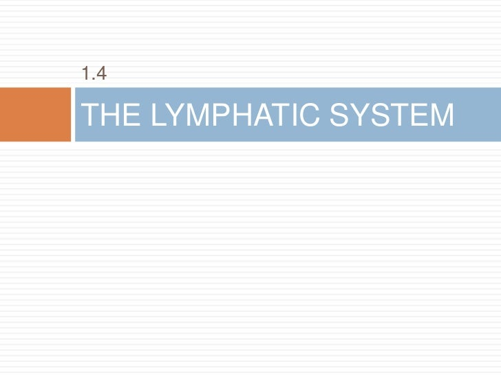 1.4THE LYMPHATIC SYSTEM