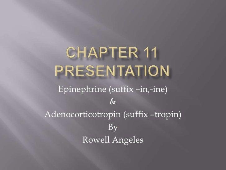 Chapter 11 presentation<br />Epinephrine (suffix –in,-ine)<br />&<br />Adenocorticotropin (suffix –tropin)<br />By <br />R...
