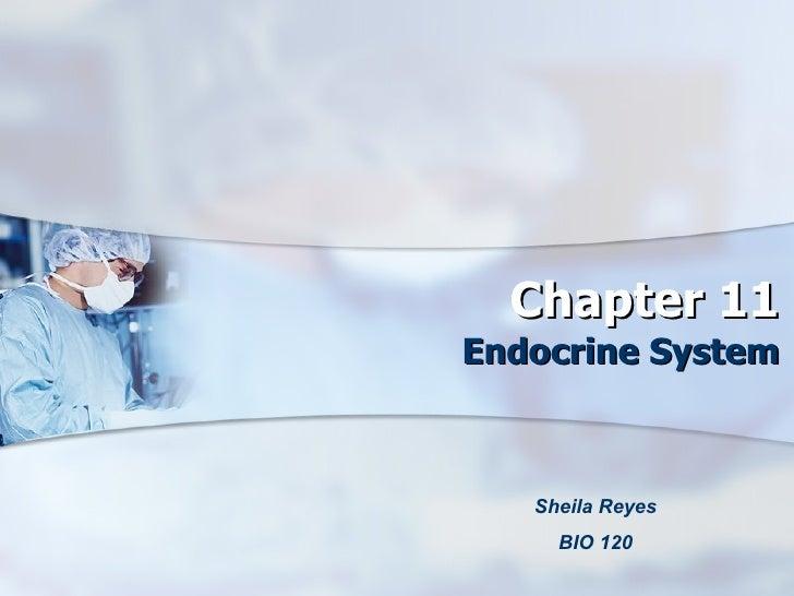 Chapter 11 Endocrine System Sheila Reyes BIO 120