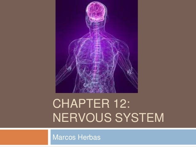 CHAPTER 12:NERVOUS SYSTEMMarcos Herbas