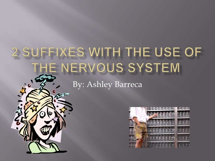 2 Suffixes with the use of the Nervous System<br />By: Ashley Barreca<br />