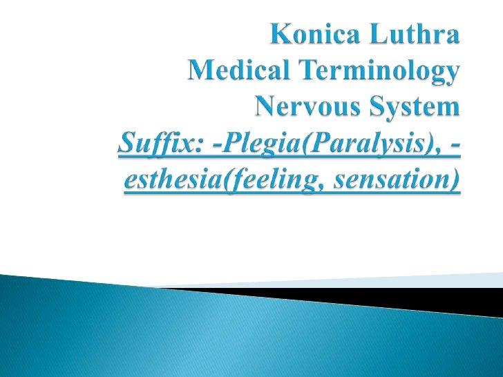 Konica LuthraMedical TerminologyNervous SystemSuffix: -Plegia(Paralysis), -esthesia(feeling, sensation)<br />