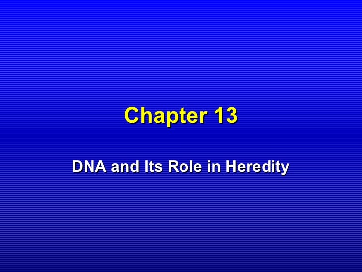 Chapter 13DNA and Its Role in Heredity