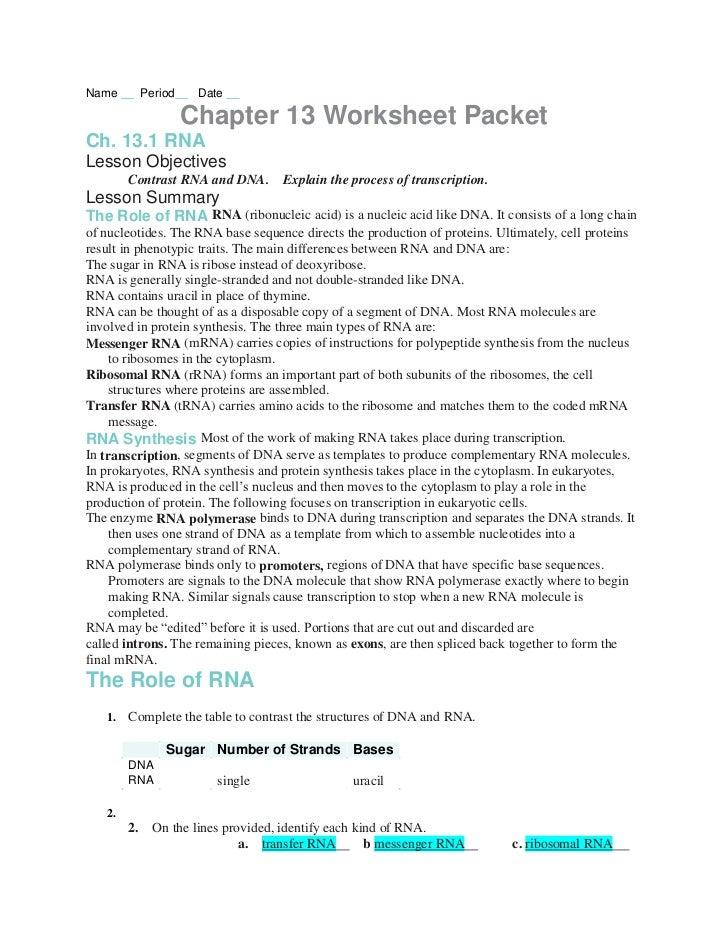 Number Of Chromosomes Worksheet Free Worksheets Library | Download ...
