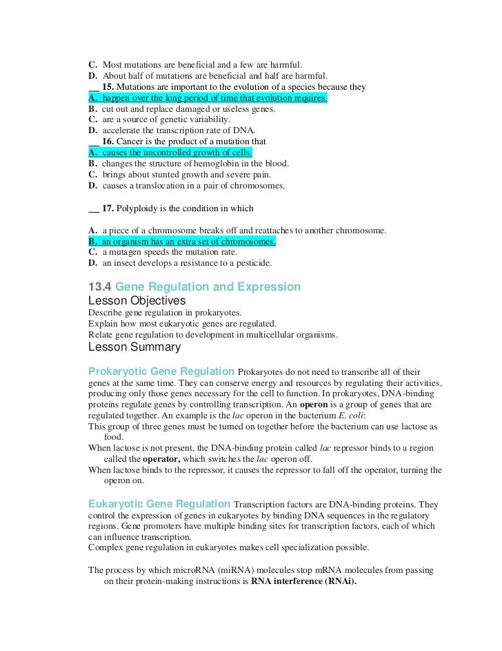 Chromosomal Mutations Worksheet Related Keywords & Suggestions ...