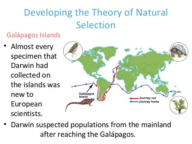 the theory of natural selection and evolution as incomplete works of charles darwin Practice quiz for darwin and natural selection: charles darwin's ideas concerning the causes of the theory of evolution by natural selection was independently.