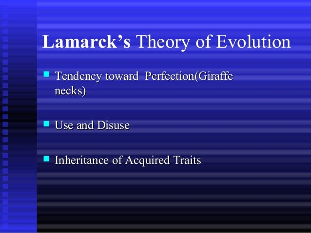 the diversity among humans based on darwins concept of variation Evolution of life: divine will according to this principle, humans, animals and plants, all evolved by according to neo-darwins.