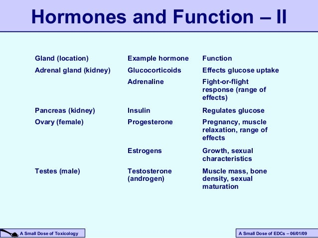 which hormone stimulates the adrenal cortex to release steroids