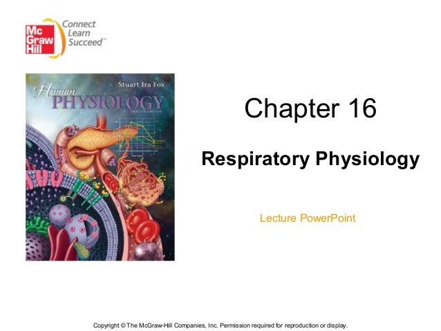 Chapter 16 lecture-1