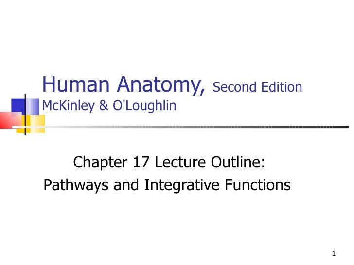 Human Anatomy,  Second Edition McKinley & O'Loughlin Chapter 17 Lecture Outline: Pathways and Integrative Functions
