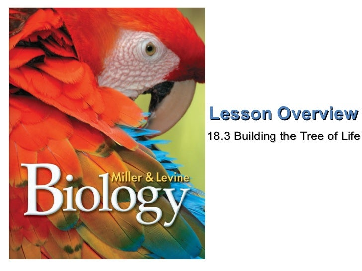 Lesson Overview 18.3 Building the Tree of Life