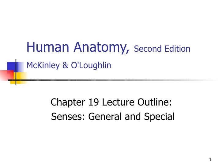 Human Anatomy,  Second Edition McKinley & O'Loughlin   Chapter 19 Lecture Outline: Senses: General and Special