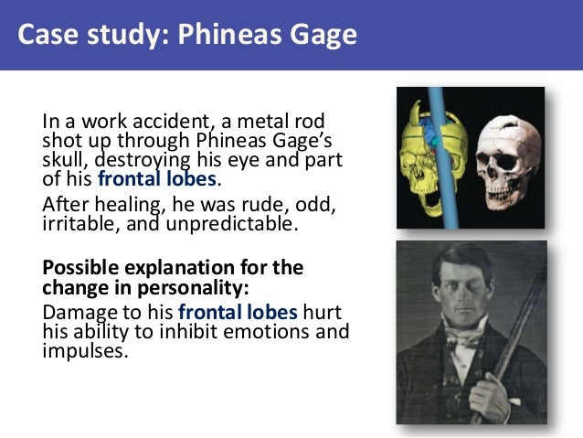 the phineas gage paper Phineas gage is considered to be one of the severe brain injuries gage suffered from personality changes after the brain injury gage was injured when excavating rocks to create a path for railroad track.