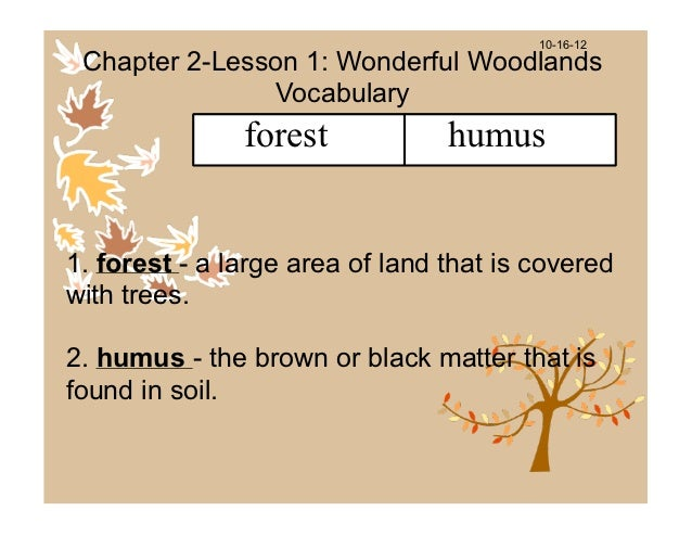 10-16-12 Chapter 2-Lesson 1: Wonderful Woodlands               Vocabulary               forest            humus1. forest -...
