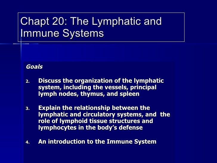 Chapt 20: The Lymphatic and Immune Systems <ul><li>Goals </li></ul><ul><li>Discuss the organization of the lymphatic syste...