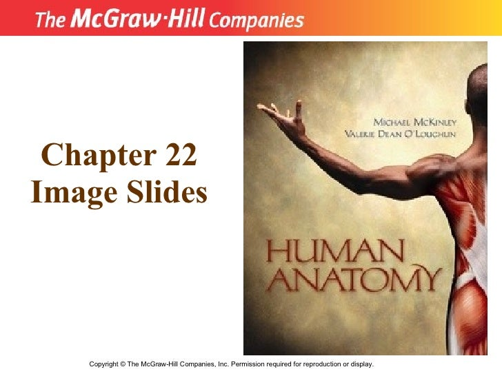Copyright  ©  The McGraw-Hill Companies, Inc. Permission required for reproduction or display. Chapter 22 Image Slides