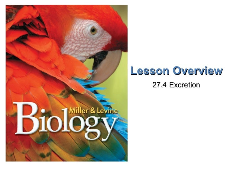 Lesson Overview 27.4 Excretion