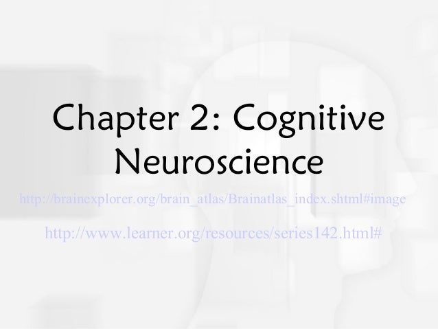 Chapter2cognitiveneuroscience4346