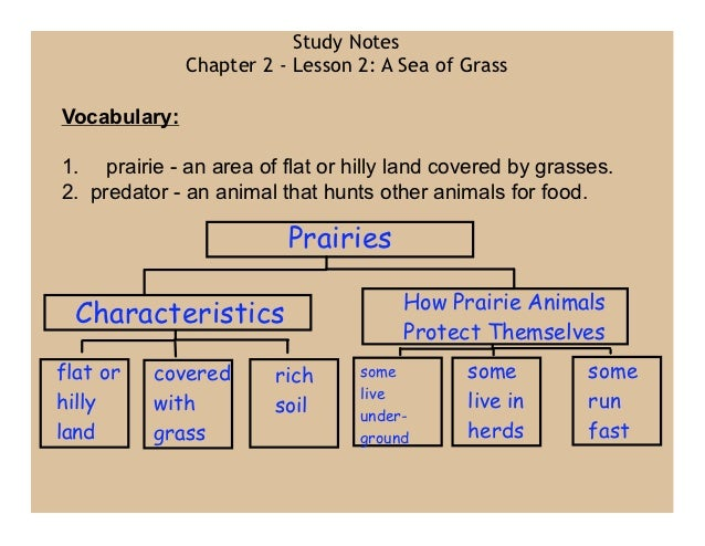Study Notes              Chapter 2 - Lesson 2: A Sea of GrassVocabulary:1. prairie - an area of flat or hilly land covered...