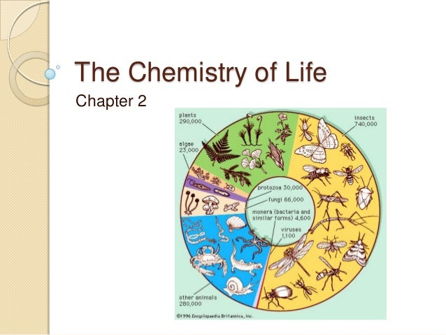 The Chemistry of LifeChapter 2