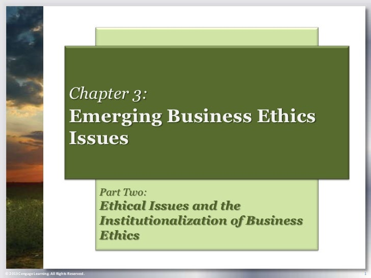 Chapter 3:                                    Emerging Business Ethics                                    Issues          ...