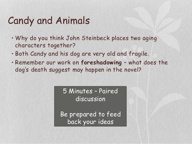Candy and Animals • Why do you think John Steinbeck places two aging characters together? • Both Candy and his dog are ver...