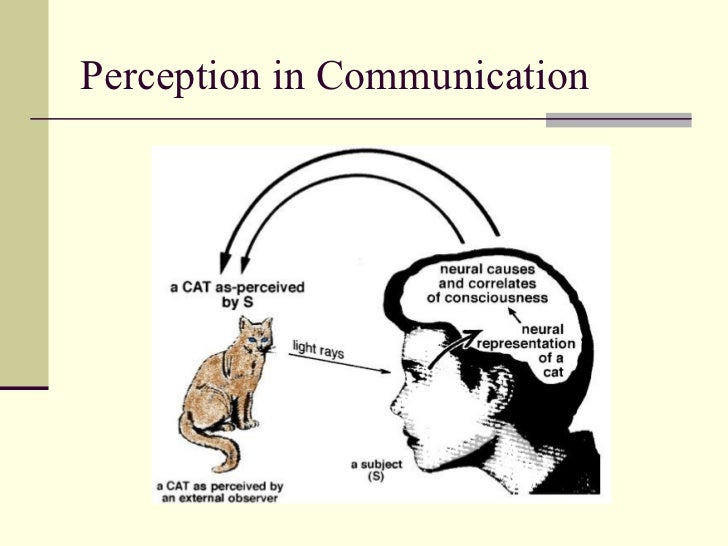 self perception communication essay Communication and your self concept sociology essay  self-perception is the final element that assists in forming self-concept  just as self-concept impacts .