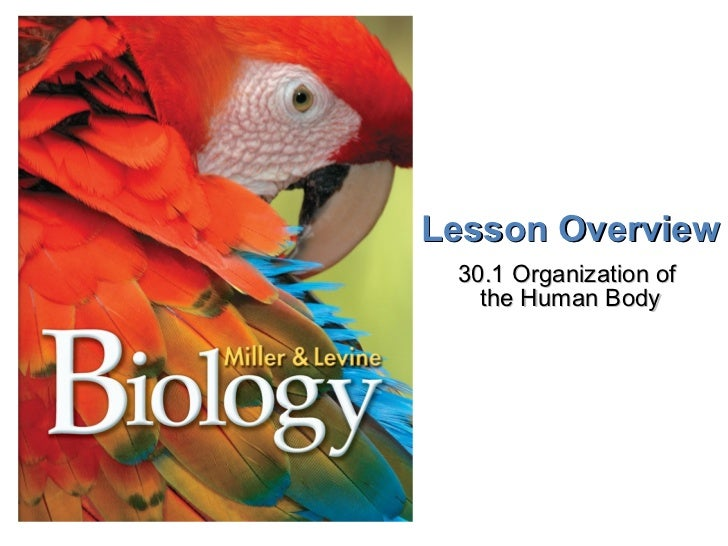 Lesson Overview 30.1 Organization of  the Human Body