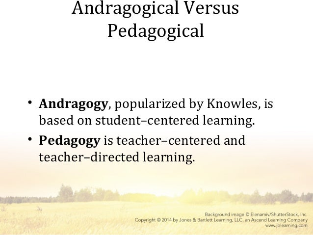 Pedagogical and andragogical approaches uk essay writing service