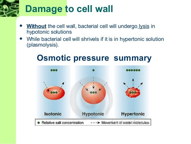 Osmotic pressure summa...