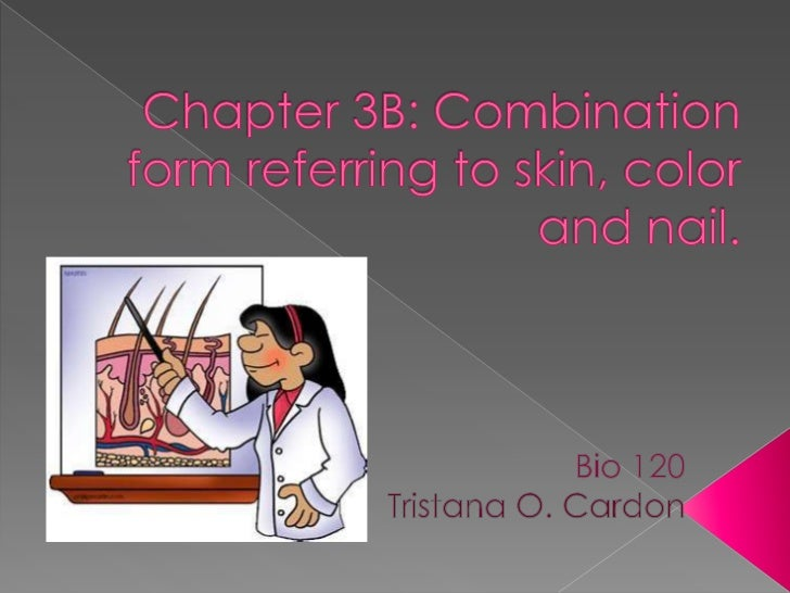 Chapter 3 b