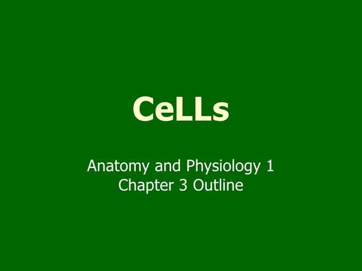 Chapter 3--CELLS